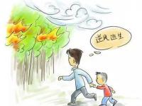 野外遇到林火该如何避险?