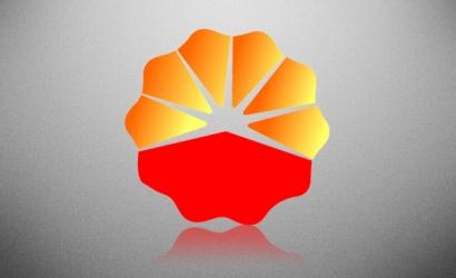 中国石油大连国际储运公司